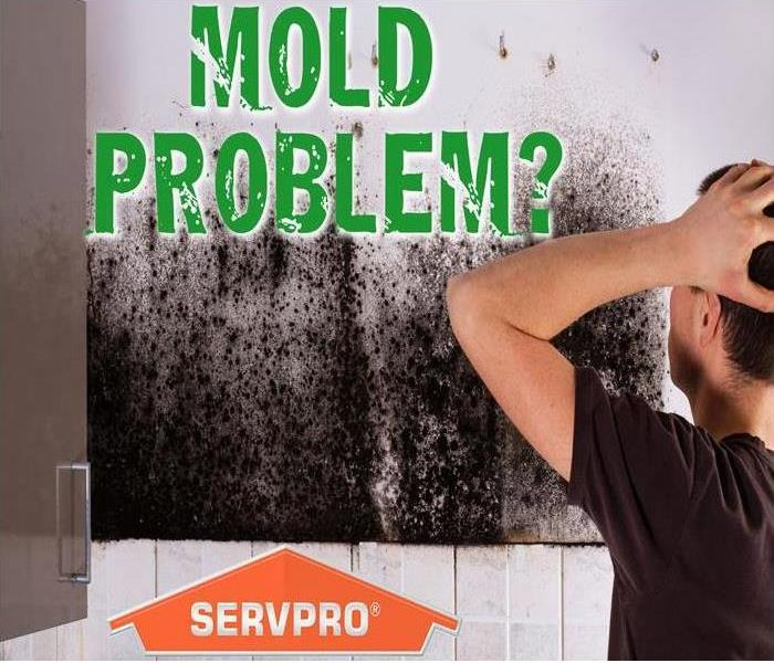 Mold Remediation Conditions In Santa Ana Might Be Right For Mold